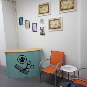 salon-dona-galerija-fotografija